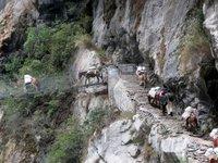 Mule_train_crossing_suspension_brid