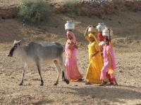 Women_carrying_water