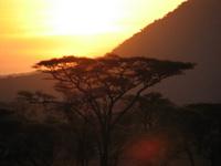 Serengeti_sunset