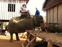 Riding_an_elephant