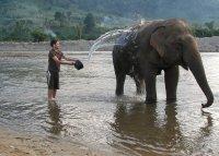 Splashing_around